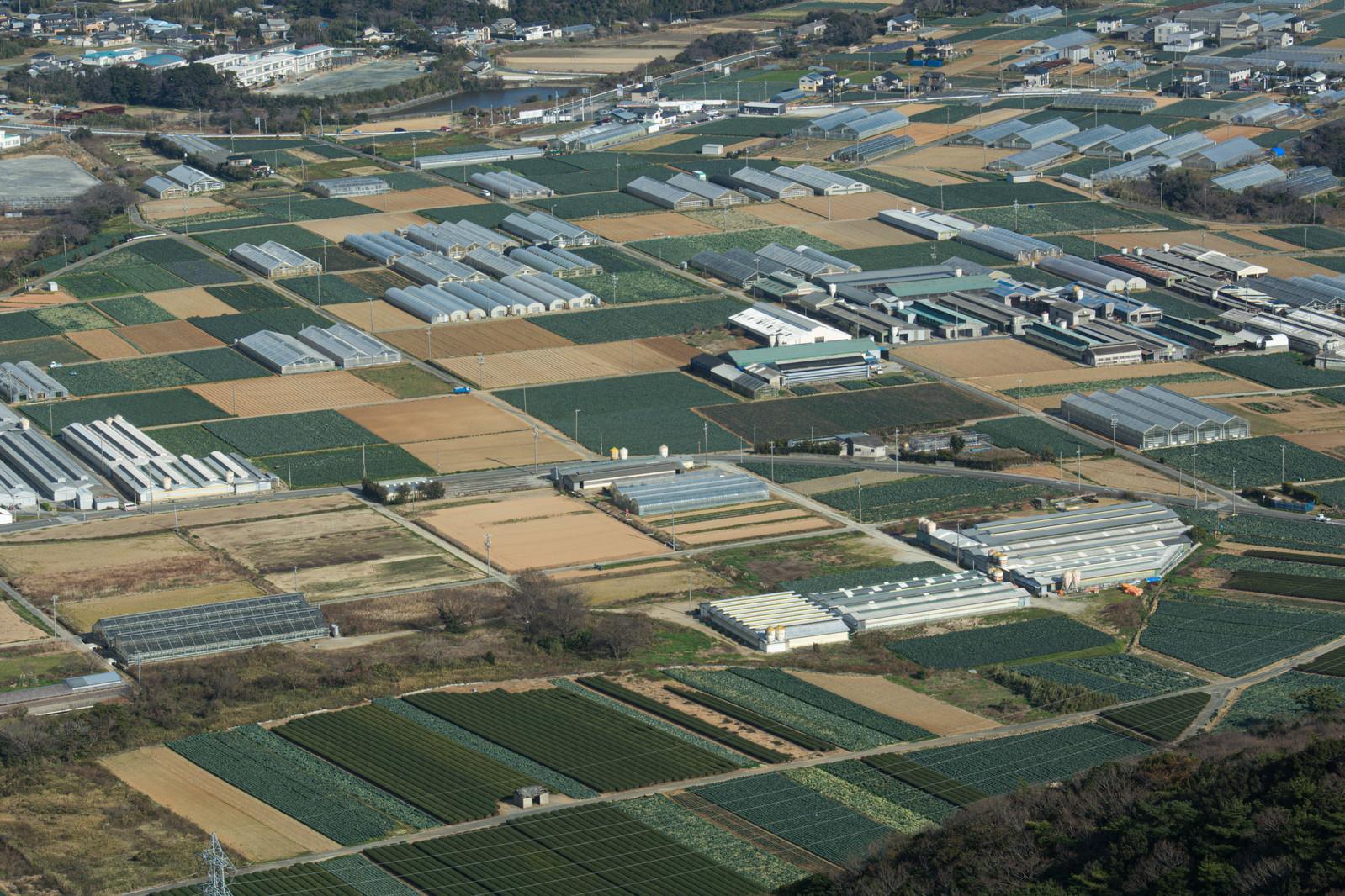 農地法3条の許可申請